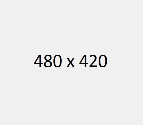 480 x 420